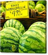 Baby Watermelons Canvas Print