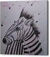 Baby Zebra Canvas Print