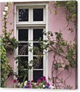Back Alley Window Box - D001793 Canvas Print