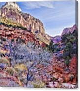 Back Of Zion Canvas Print