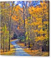 Back Road Fall Foliage Canvas Print