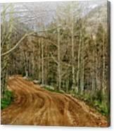Back Road Home Canvas Print