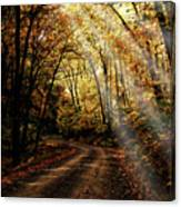 Backcountry Road Canvas Print