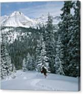 Backcountry Skiing Into An Evergreen Canvas Print