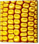 Background Corn Canvas Print