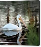 Backwater Serenity Photograph Canvas Print