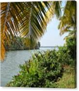 Backwaters Of Kerala-2 Canvas Print