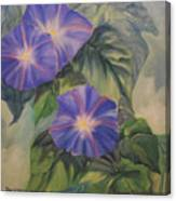 Backyard Morning Glories Canvas Print