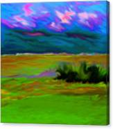 Backyard Sky Canvas Print
