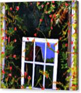 Backyard Window Canvas Print