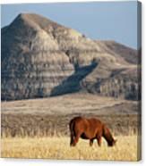 Badlands Canada Saskatchewan Canvas Print