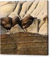 Badlands Drumheller Alberta Canada 4 Canvas Print