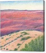 Badlands Canvas Print