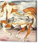 Badlands Horses Canvas Print