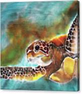 Bahamian Turtle Dove Canvas Print