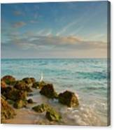 Bahia Honda Shoreline Canvas Print