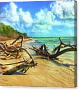 Bahia Honda State Park Canvas Print