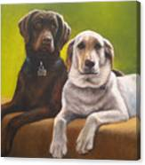 Bailey And Hershey Canvas Print