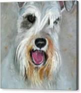 Bailey Canvas Print