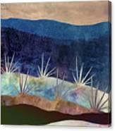 Baja Landscape Number 2 Canvas Print