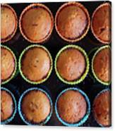 Baked Cupcakes Canvas Print