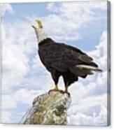 Bald Eagle Art - Speak Your Voice Canvas Print