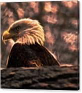 Bald Eagle Electrified Canvas Print