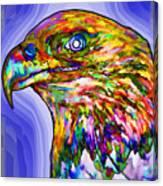 Bald Eagle Face Canvas Print