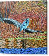 Bald Head Island, Gator, Blue Heron Canvas Print