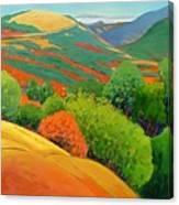 Bald Hill Canvas Print