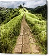 Bali Landscape 4 Canvas Print