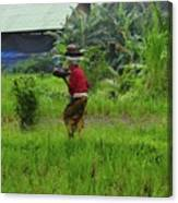 Balinese Lady Carrying Pot Canvas Print