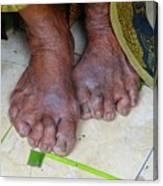 Balinese Lady's Feet Canvas Print