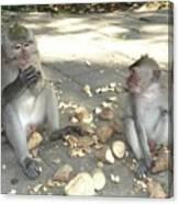Balinese Monkeys Eating Canvas Print