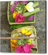 Balinese Offering Baskets Canvas Print