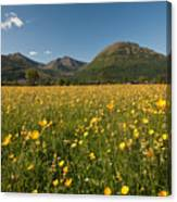 Ballachulish Canvas Print