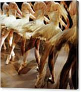 Ballet Dancers 05 Canvas Print