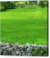 Ballyvaughn Fields Canvas Print