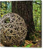 Bamboo Ball Canvas Print