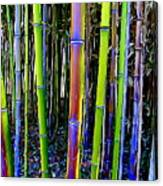 Bamboo Dreams #13 Canvas Print
