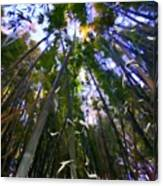 Bamboo Dreams #4 Canvas Print