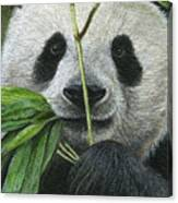 Bamboo Foodie Canvas Print