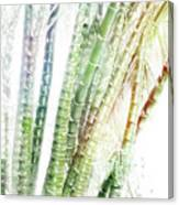 Bamboo Forest Watercolor Canvas Print
