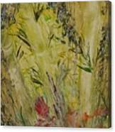 Bamboo In The Forest Canvas Print