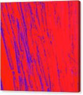 Bamboo Johns Yard 12 Canvas Print