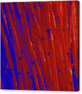 Bamboo Johns Yard 3 Canvas Print