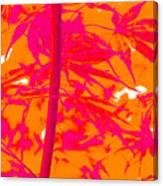 Bamboo Like Leaves Orange Canvas Print