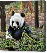Bamboo Loving Canvas Print