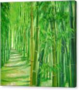Bamboo Paths Canvas Print