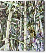 Bamboo Sprouts Forest Canvas Print